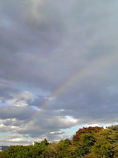 虹・・綺麗ですね。